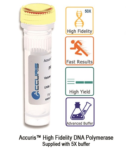 Benchmark Accuris High Fidelity DNA Polymerase