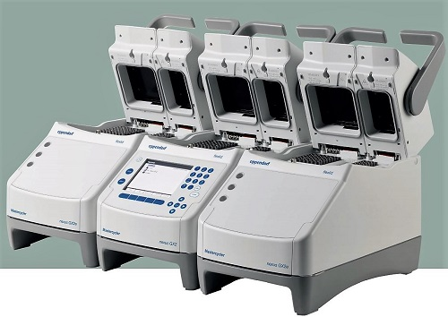Eppendorf Mastercycler Nexus Thermocycler