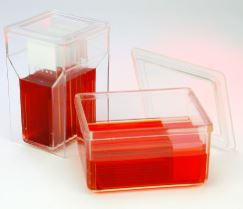 Microscope Slide Staining Products from Globe Scientific