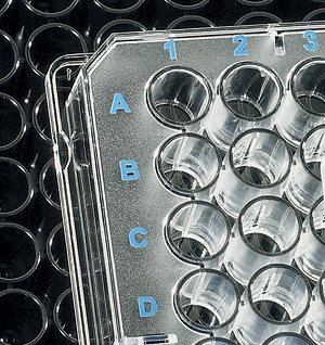 Microplates | BRANDplates Immunoassay Microplates, 3 Treatment Options