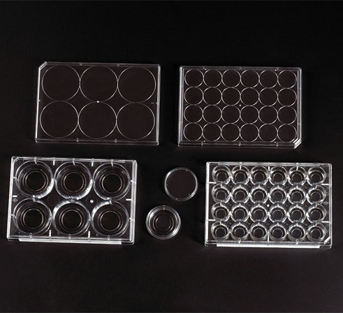 CELLTREAT Glass Bottom Cell Culture Dishes & Plates