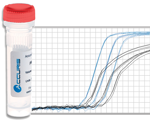 Benchmark Accuris qMAX Probe qPCR Master Mix