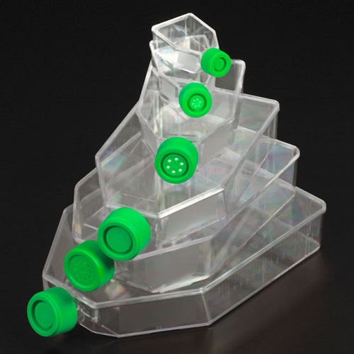 CELLTREAT Tissue Culture Treated (TCT) Flasks